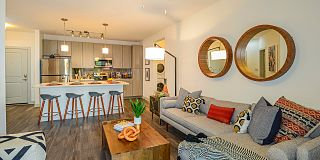100 best furnished apartments in tampa fl with pictures