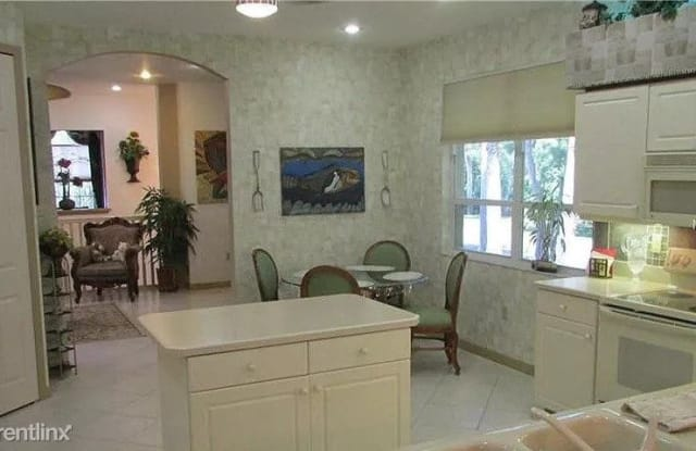 4209 Preserve Place - 4209 Preserve Place, East Lake, FL 34685