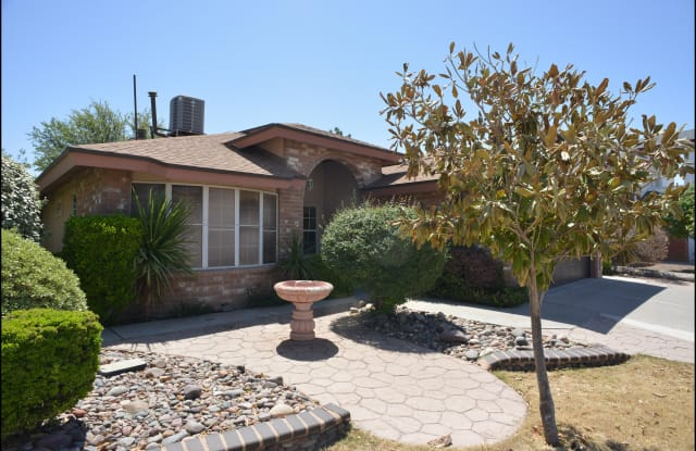 1416 ADOLPH CARSON Place - 1416 Adolph Carson Place, El Paso, TX 79936