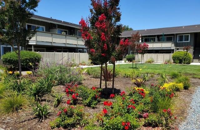 Latham Square Apartments - 2250 Latham St, Mountain View, CA 94040
