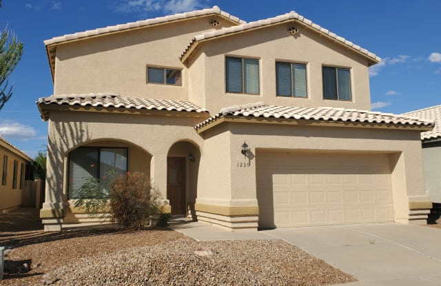 1230 W Crystal Palace Place - 1230 West Crystal Palace Place, Oro Valley, AZ 85737