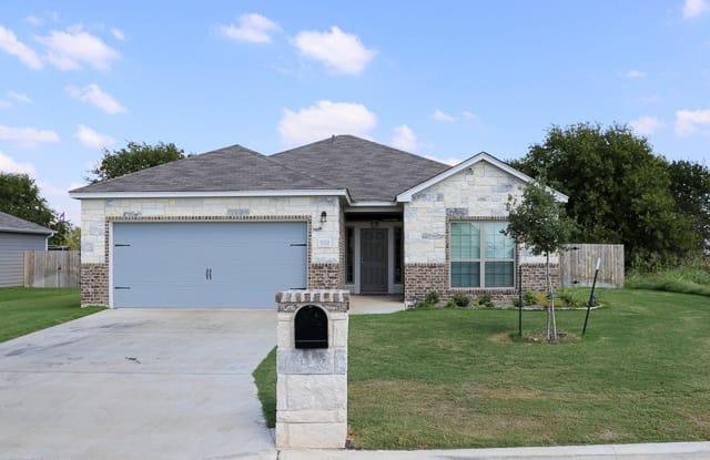 7020 Tanglehead Drive - 7020 Tanglehead Drive, Temple, TX 76502