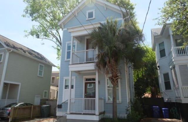 293 Coming Street - 293 Coming Street, Charleston, SC 29403