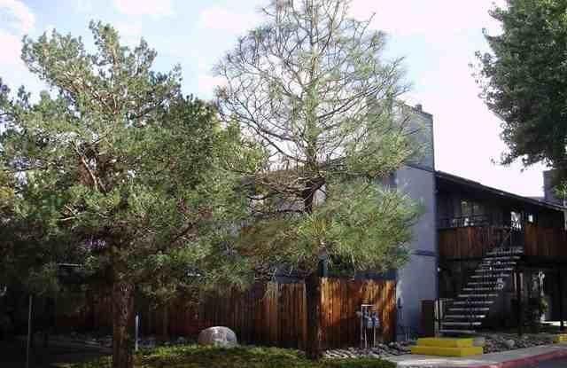 2241 Kietzke Ln - 2241 Kietzke Lane, Reno, NV 89502