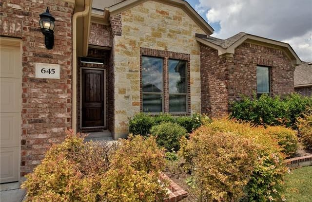 645 Clear Springs HOLW - 645 Clear Springs Hollow, Buda, TX 78610
