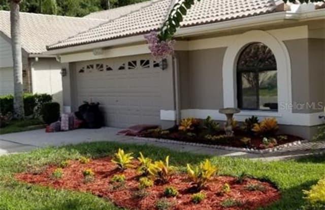 3664 DARSTON STREET - 3664 Darston Street, East Lake, FL 34685