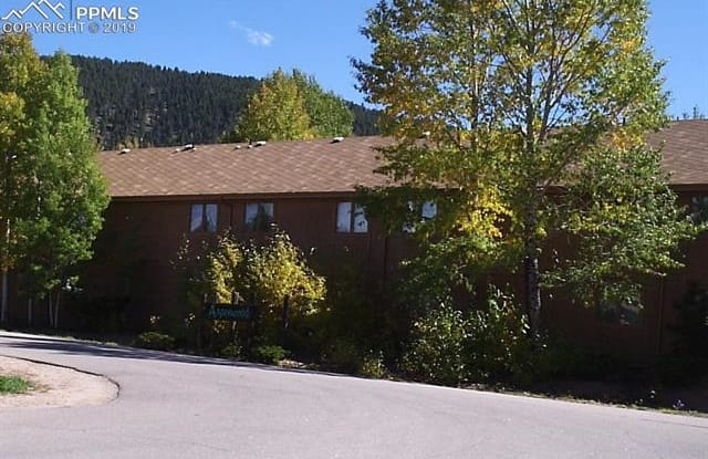 401 Forest Edge Road - 401 Forest Edge Road, Woodland Park, CO 80863