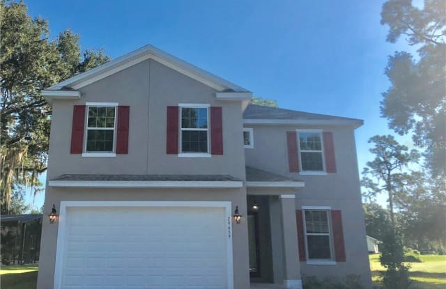29459 HOLLY COURT - 29459 Holly Court, Wesley Chapel, FL 33543