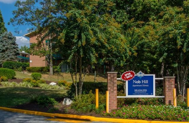 Nob Hill Apartments - 9120 Piney Branch Rd, Silver Spring, MD 20903