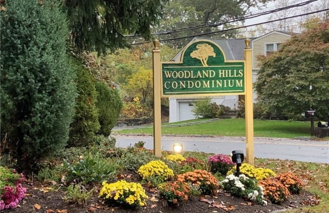 211 Woodland Hills Road - 211 Woodland Hills Rd, Westchester County, NY 10603