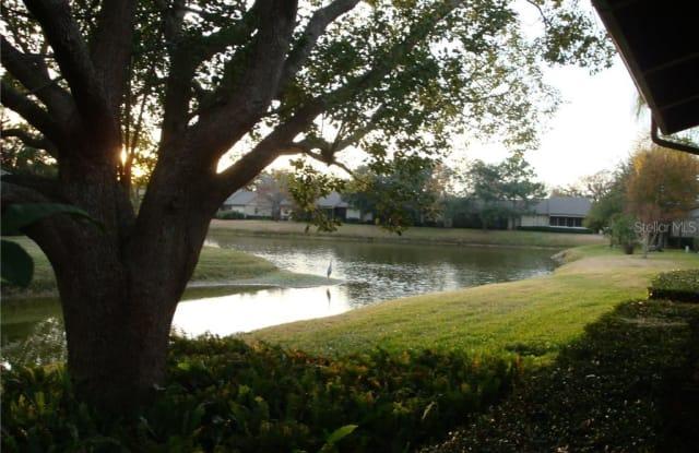 70 JOANNE PLACE - 70 Joanne Place, East Lake, FL 34677