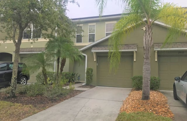 2954 Willowleaf Ln. - 2954 Willowleaf Lane, Wesley Chapel, FL 33544