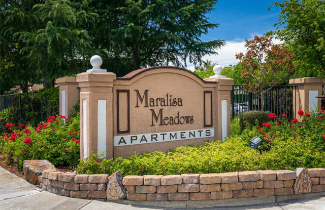 MaraLisa Meadows - 6175 Water Lily Common, Livermore, CA 94551