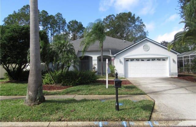 4700 ILEX COURT - 4700 Ilex Court, East Lake, FL 34685