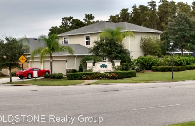 20201 Merry Oak Ave - 20201 Merry Oak Avenue, Pebble Creek, FL 33647