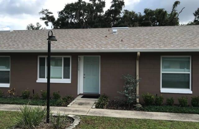 1113 Royal Palm Avenue - 1113 Royal Palm Avenue, Pine Castle, FL 32809
