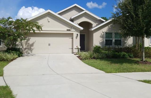 3253 HIDDEN MEADOWS CT - 3253 Hidden Meadows Court, Asbury Lake, FL 32043