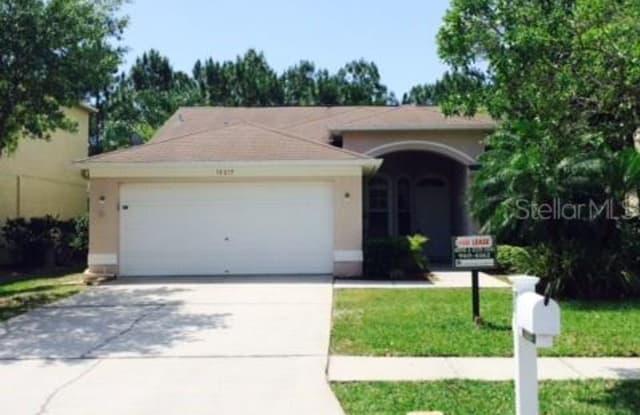 13217 ROYAL GEORGE AVENUE - 13217 Royal George Avenue, Keystone, FL 33556
