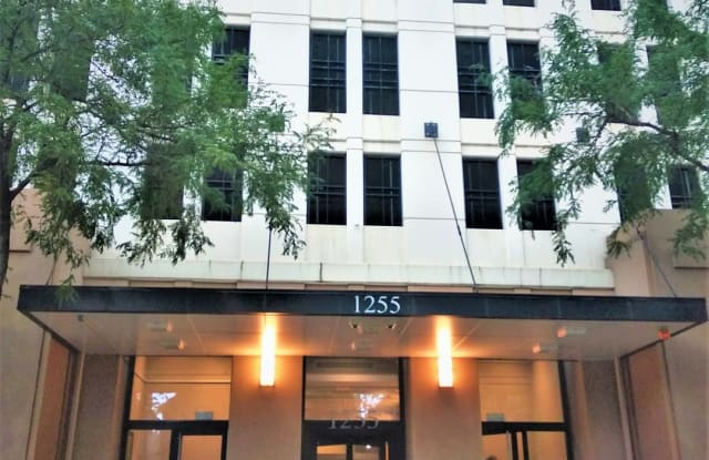 1255 South State Street - 1255 South State Street, Chicago, IL 60605