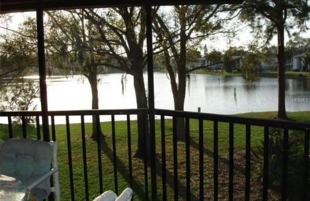 202 Woodlake Wynde - 202 Woodlake Wynde, East Lake, FL 34677
