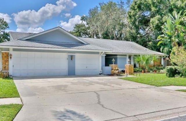3900 Belmoor Drive - 3900 Belmoor Drive, East Lake, FL 34685