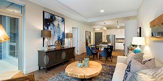 221 229 Portland Avenue South Minneapolis Mn 55415 1 Bedroom