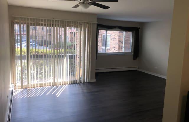 420 S Home - 1, Unit 106N - 420 South Home Avenue, Oak Park, IL 60302