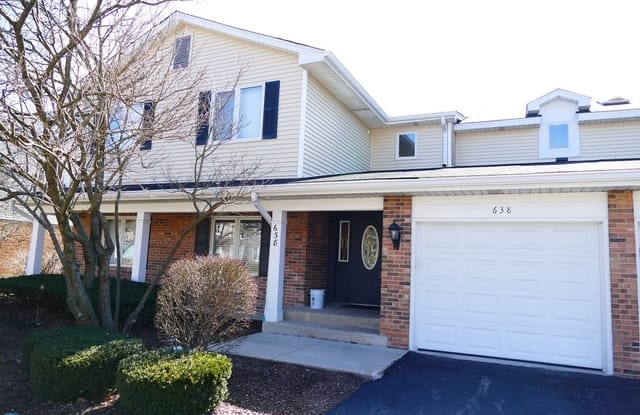 638 Zaininger Street - 638 Zaininger Avenue, Naperville, IL 60563