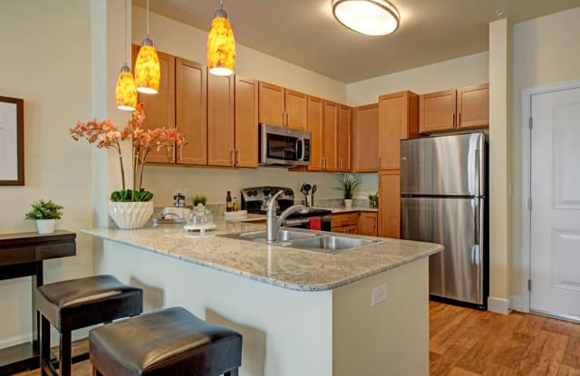Elements at Briargate - 9403 Cadmium View, Colorado Springs, CO 80920