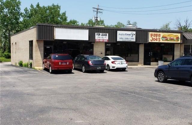 29127 Euclid Ave - 29127 Euclid Avenue, Wickliffe, OH 44092