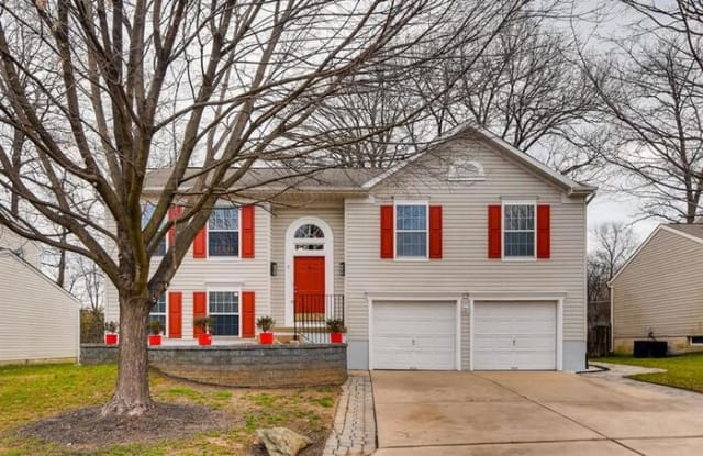 7 Rider Mill Court - 7 Rider Mill Court, Owings Mills, MD 21117