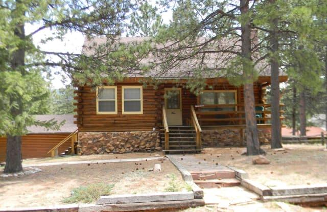 433 Burdette Circle - 433 Burdette Circle, Woodland Park, CO 80863