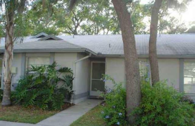 13004 Purdue Pl - 13004 Purdue Place, Temple Terrace, FL 33617