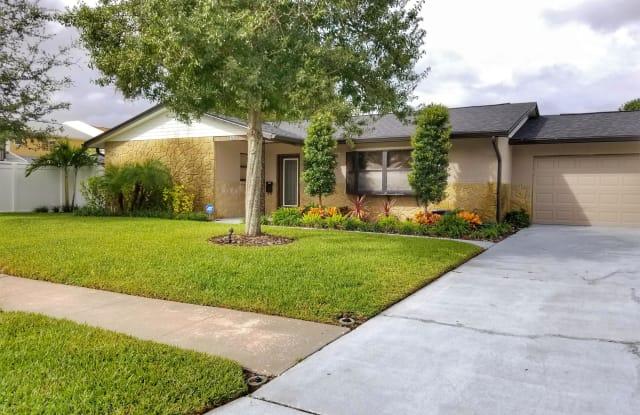 4704 Lodestone Drive - 4704 Lodestone Drive, Town 'n' Country, FL 33615