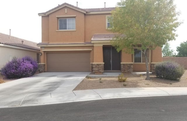 3694 BLAKE CANYON DR - 3694 Blake Canyon Drive, North Las Vegas, NV 89032