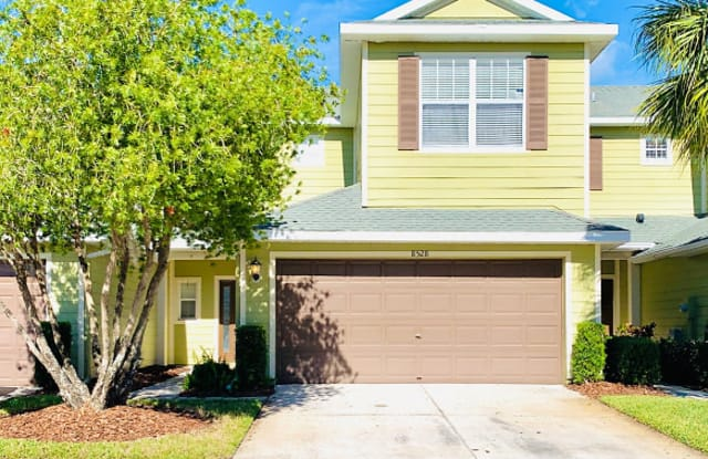 8528 Sandpiper Ridge Ave - Tampa, FL apartments for rent