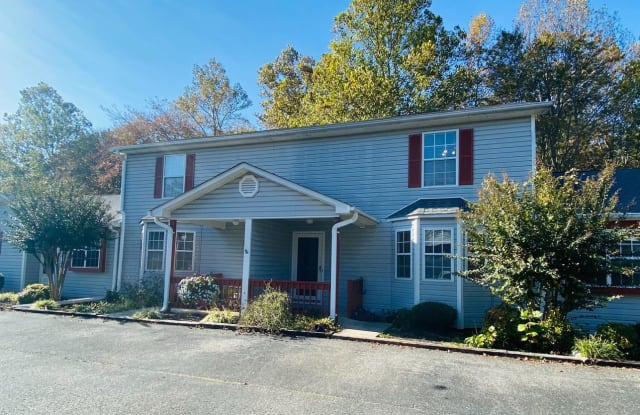 503 Goose Meadow Dr - 503 Goose Meadow Drive, Forest, VA 24551