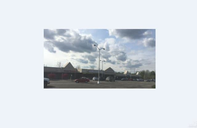 593 N Cedar Street - 593 N Cedar St, Imlay City, MI 48444