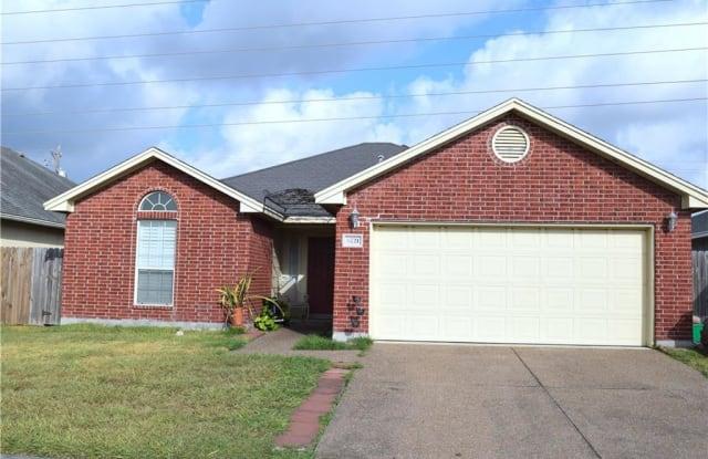 6721 Earnhart - 6721 Earnhart, Corpus Christi, TX 78414