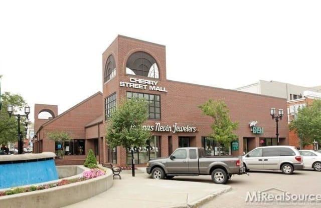 50 Cherry Street - 50 Cherry St, Mount Clemens, MI 48043