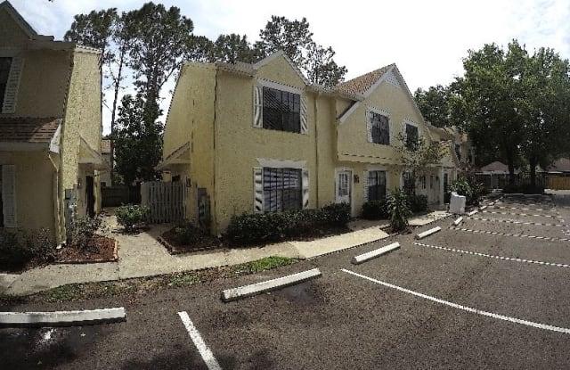 4102 Tartan Pl - 4102 Tartan Place, Carrollwood, FL 33618