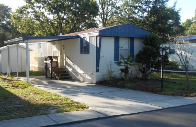 Forest Green Family Community - 14024 Bluegill Lane, Pasco County, FL 34669