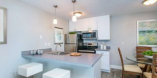 100 Best Apartments For Rent In Tampa Fl With Pictures
