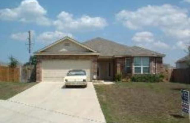229 SPICE OAK LN - 229 Spice Oak Lane, Cibolo, TX 78108
