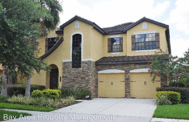 20303 Chestnut Grove Dr. - 20303 Chestnut Grove Drive, Tampa, FL 33647