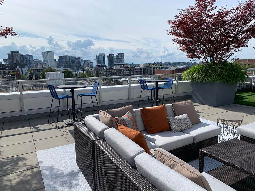 1 Bedroom Apartments Capitol Hill Seattle | 1 Bedroom ...