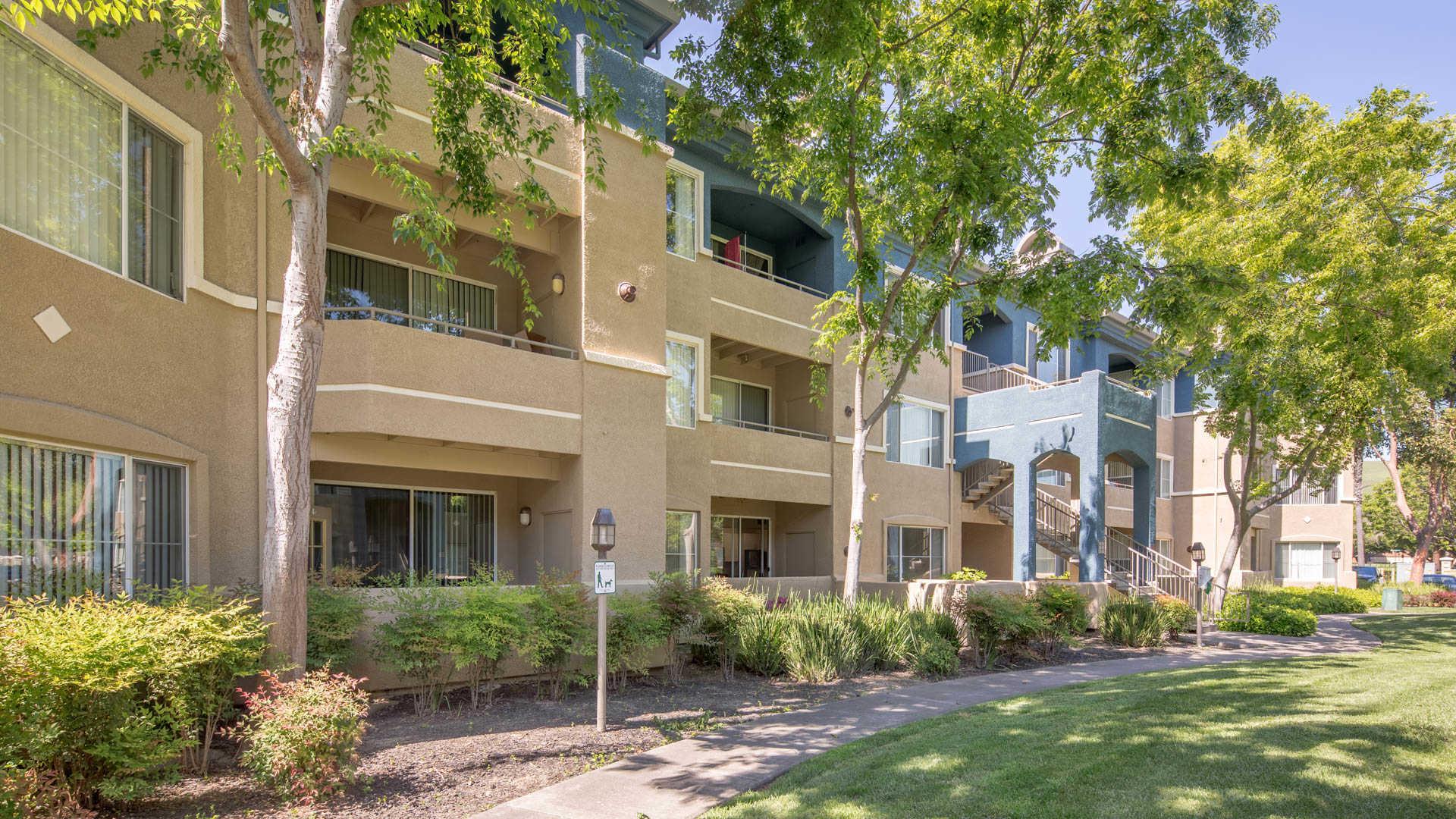 San Francisco Apartments For Rent Craigslist | baby-starlight