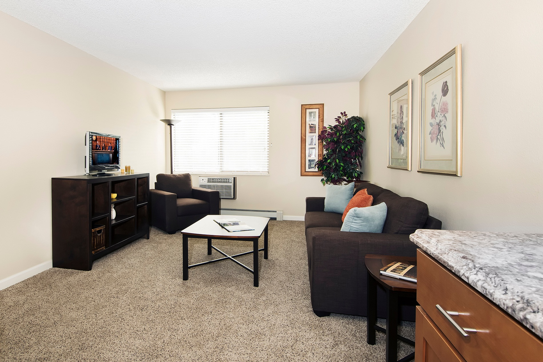 20 best apartments in longmont co with pictures solutioingenieria Image collections