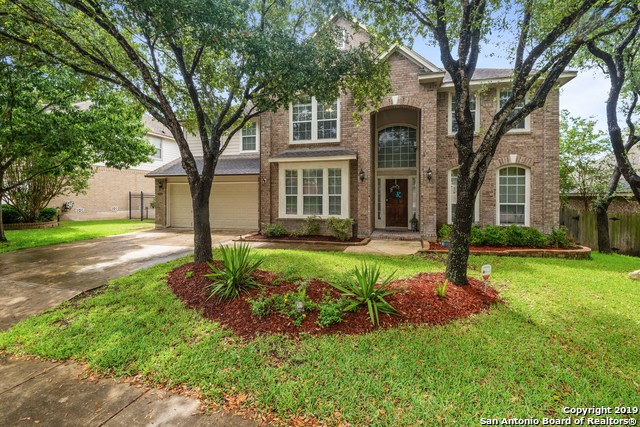 Apartments in Shady Oaks, San Antonio, TX (see photos, floor