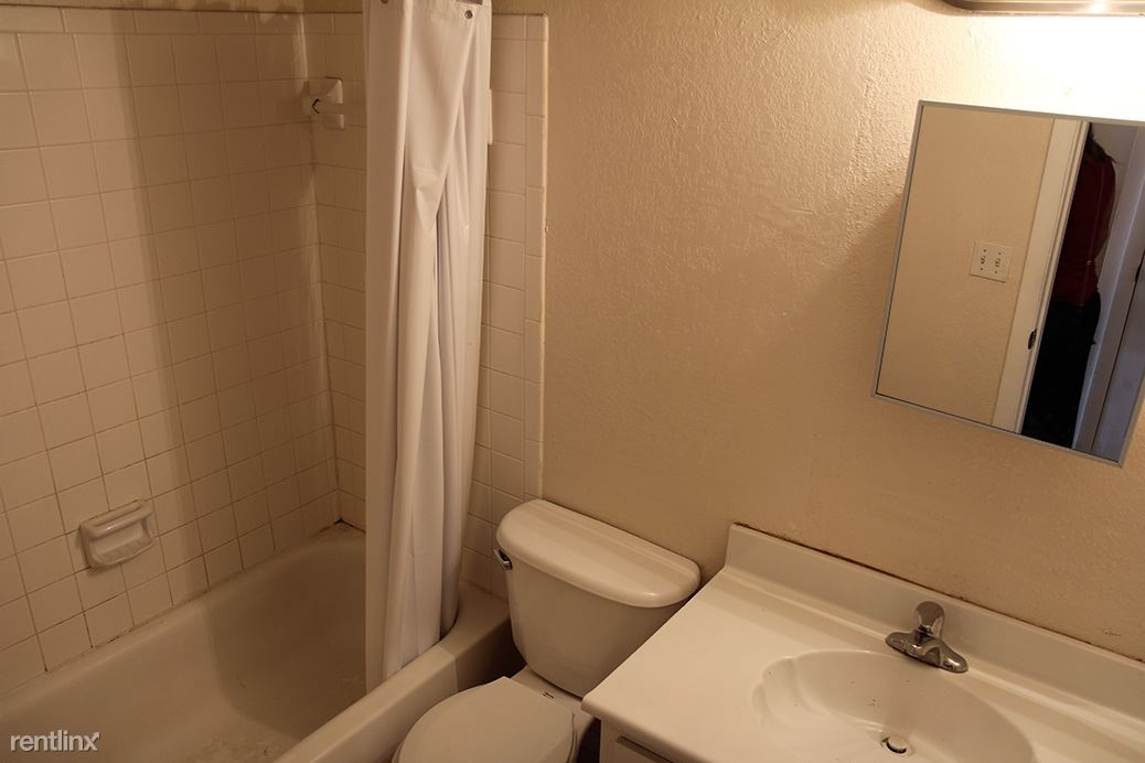 20 Best Apartments Under $800 in Tampa, FL (with pictures)!